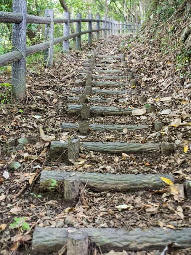 Stairs in the Woods, Random stairs in the woods